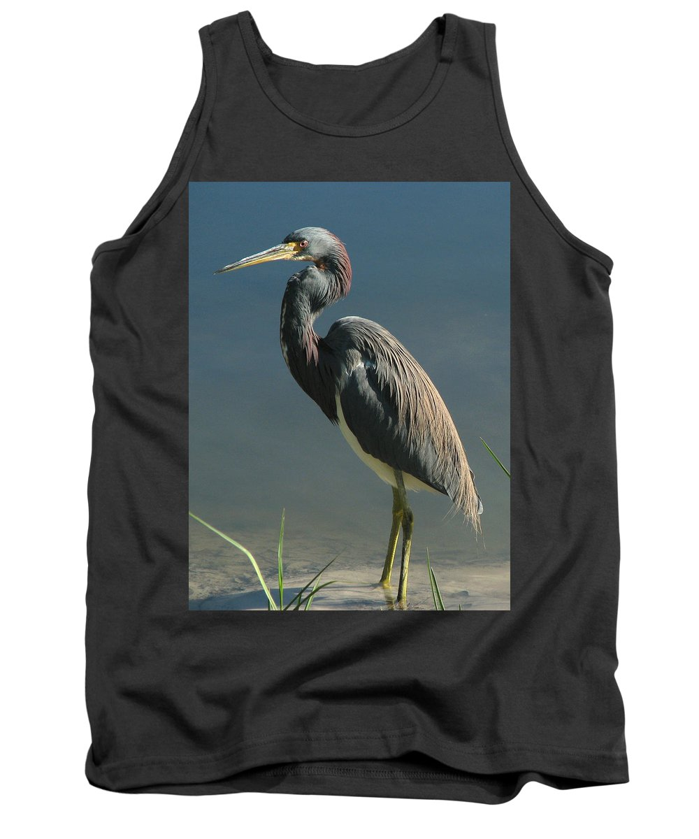 Nature Tank Top featuring the photograph Tricolored Heron by Peg Urban