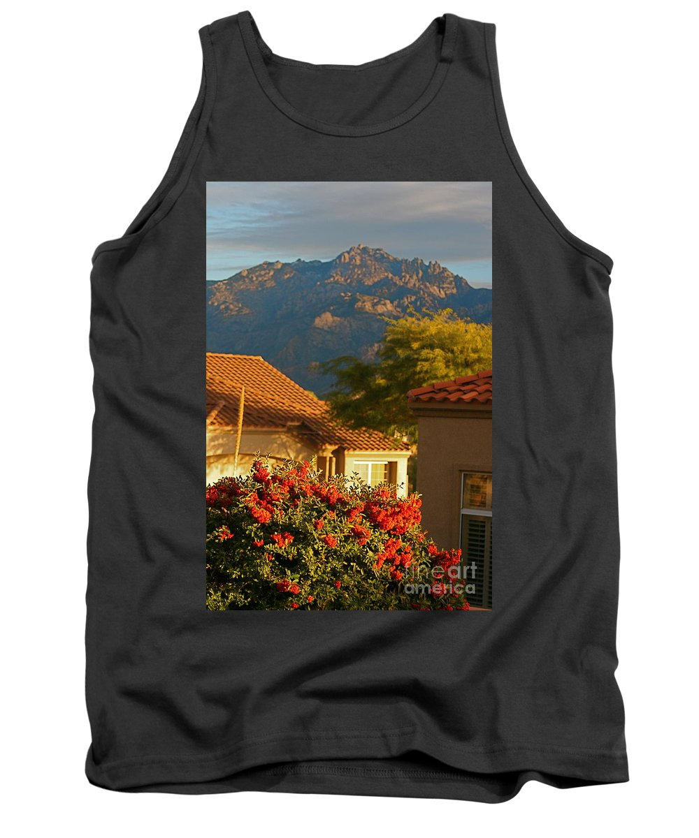 Mountains Tank Top featuring the photograph Tucson Beauty by Nadine Rippelmeyer