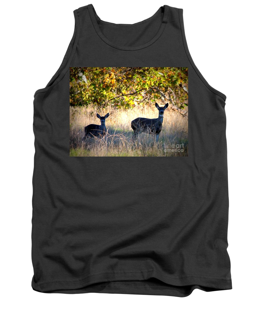 Animal Tank Top featuring the photograph Two Deer In Autumn Meadow by Carol Groenen