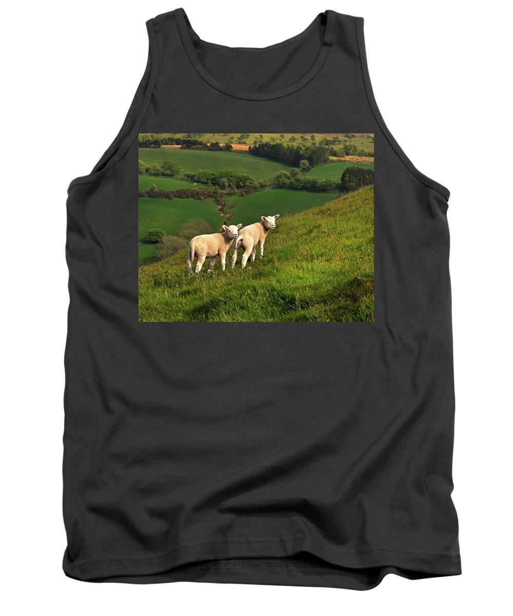 Wales Tank Top featuring the digital art Two Welsh Lambs by Vicki Lea Eggen