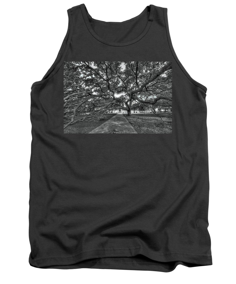Century Tree Tank Top featuring the photograph Under The Century Tree - Black And White by David Morefield