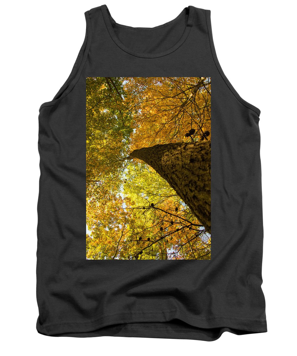 Trees Tank Top featuring the photograph Up To The Top by Edie Ann Mendenhall