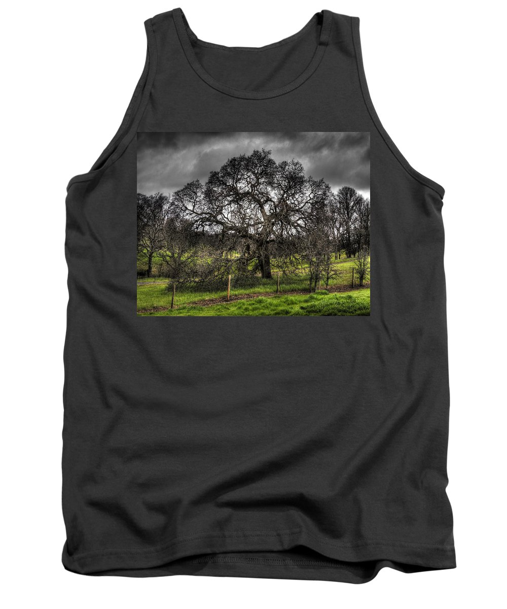 Landscape Tank Top featuring the photograph Valley Oak by Lee Santa