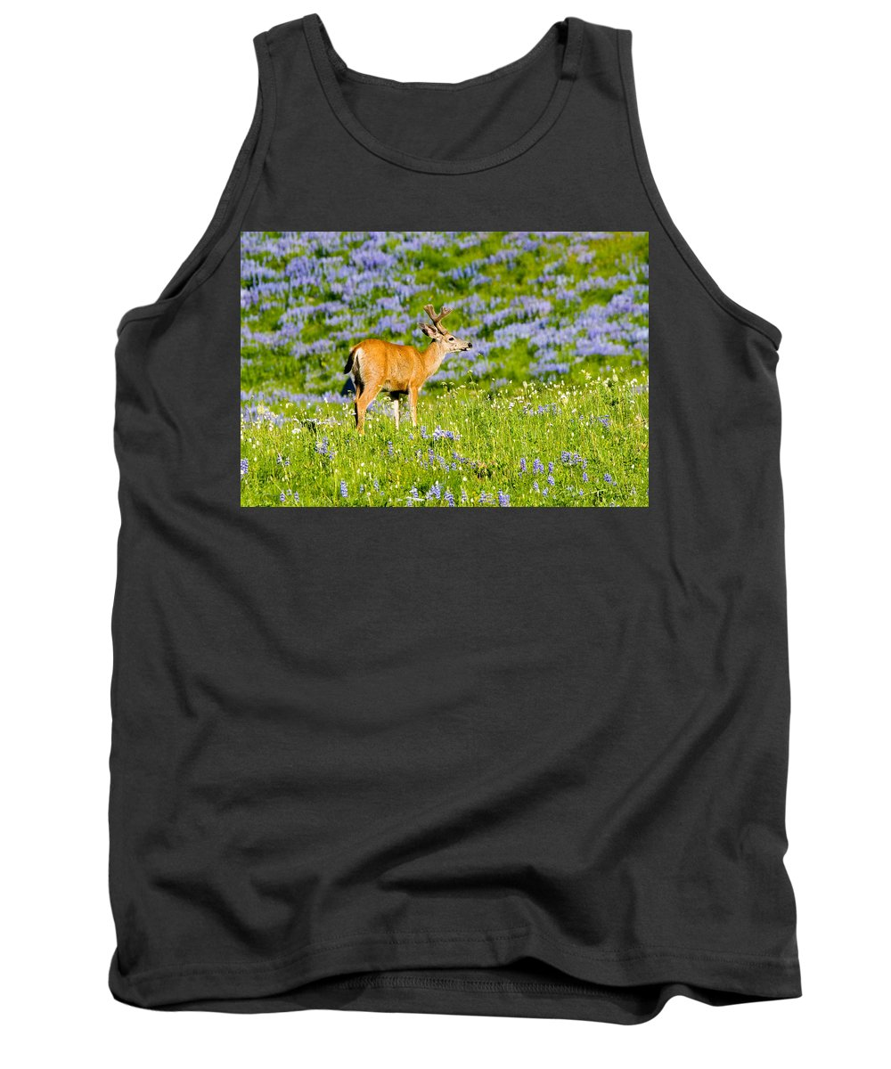 Deer Tank Top featuring the photograph Velvet On Lupine by Mike Dawson