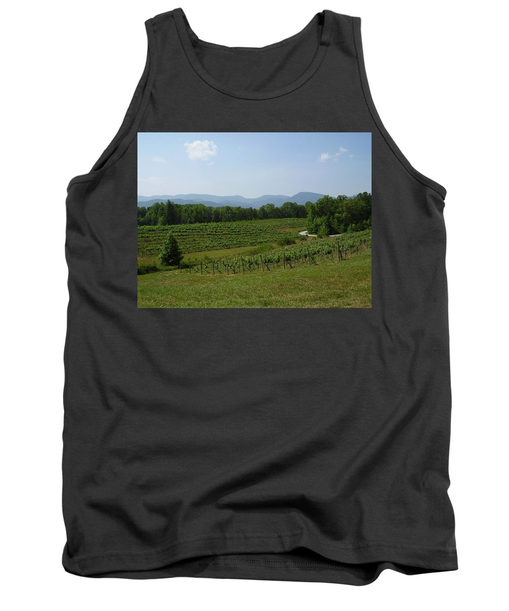 Vineyard Tank Top featuring the photograph Vineyard by Flavia Westerwelle