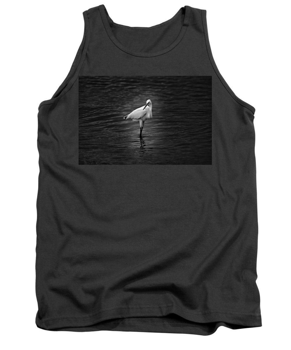 Black And White Tank Top featuring the photograph Watching You by Jody Braswell