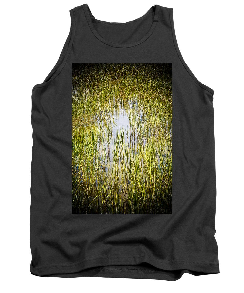 Wetlands Tank Top featuring the photograph Wetlands by Marilyn Hunt