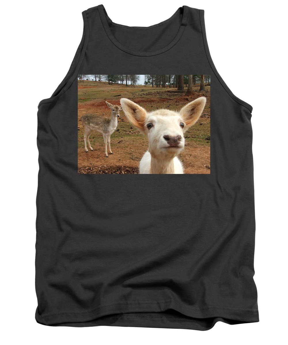 Deer Tank Top featuring the photograph What Is That by Robert Meanor