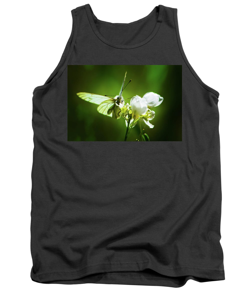 Butterfly Tank Top featuring the photograph White Butterfly by Christine Dorfer