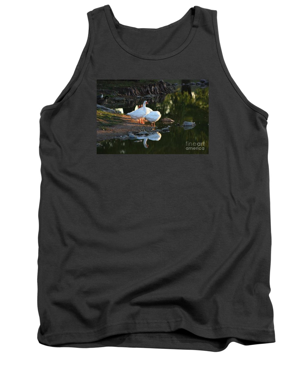 Geese Tank Top featuring the photograph White Geese In A Park With Water Reflection by Robert D Brozek