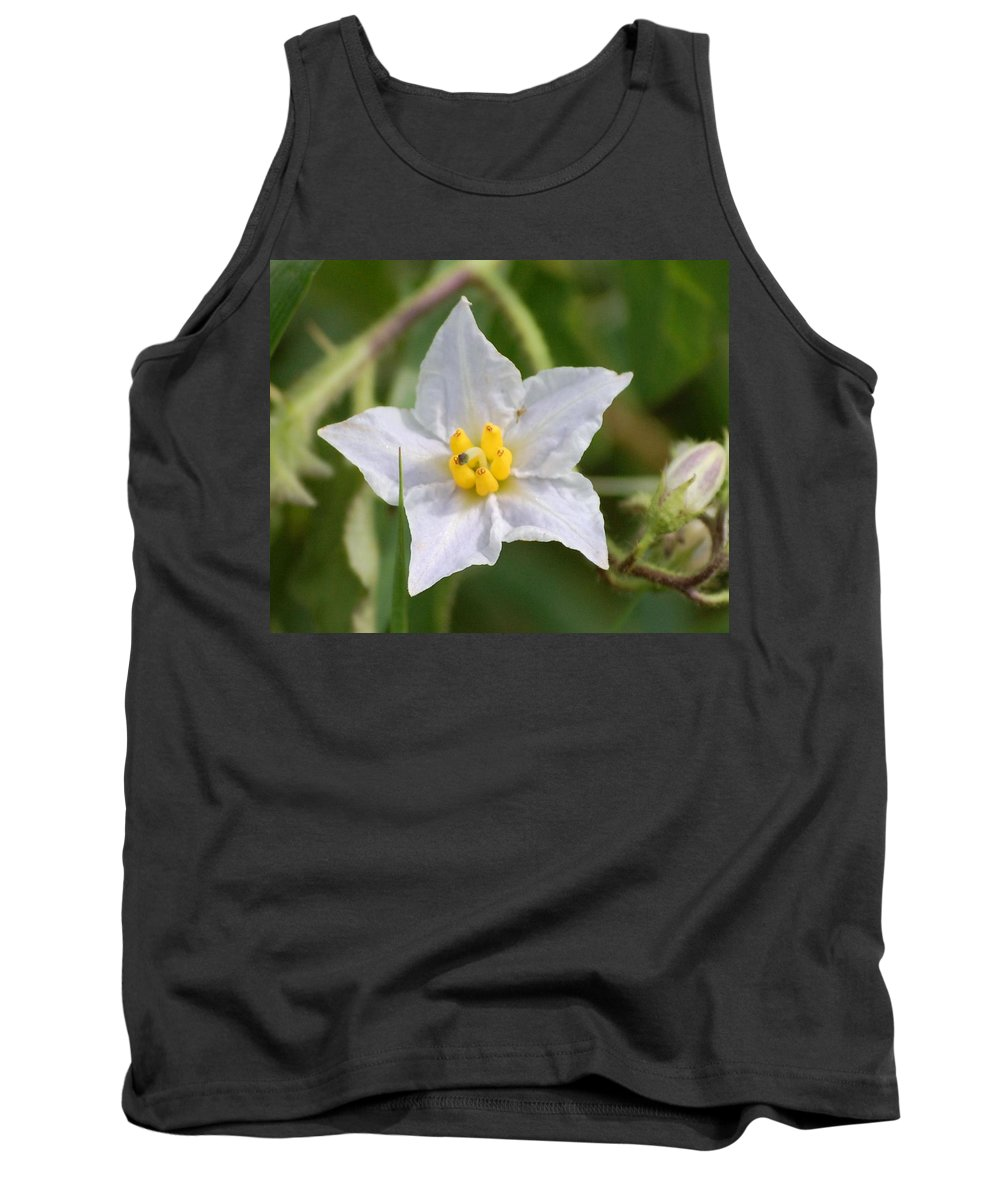 Digital Photo Tank Top featuring the photograph White Star by David Lane