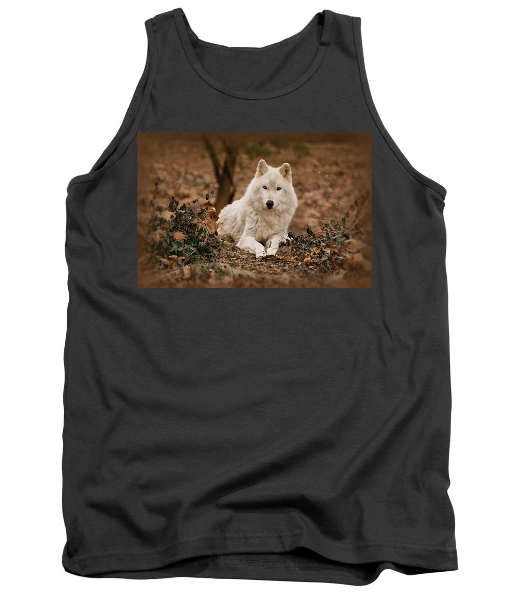Wolf Tank Top featuring the photograph White Wolf by Sandy Keeton