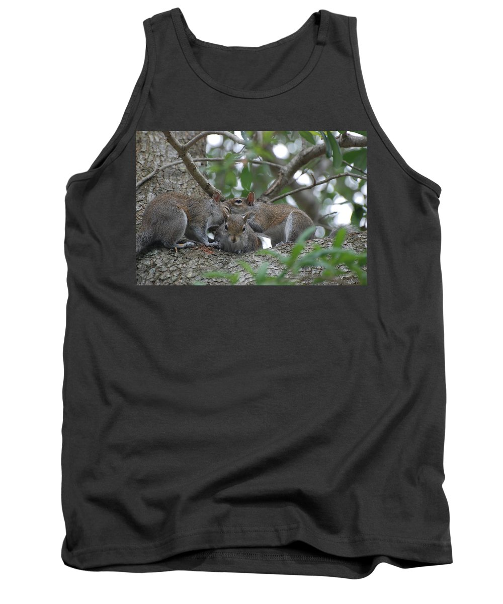 Squirrel Tank Top featuring the photograph Why Me by Rob Hans