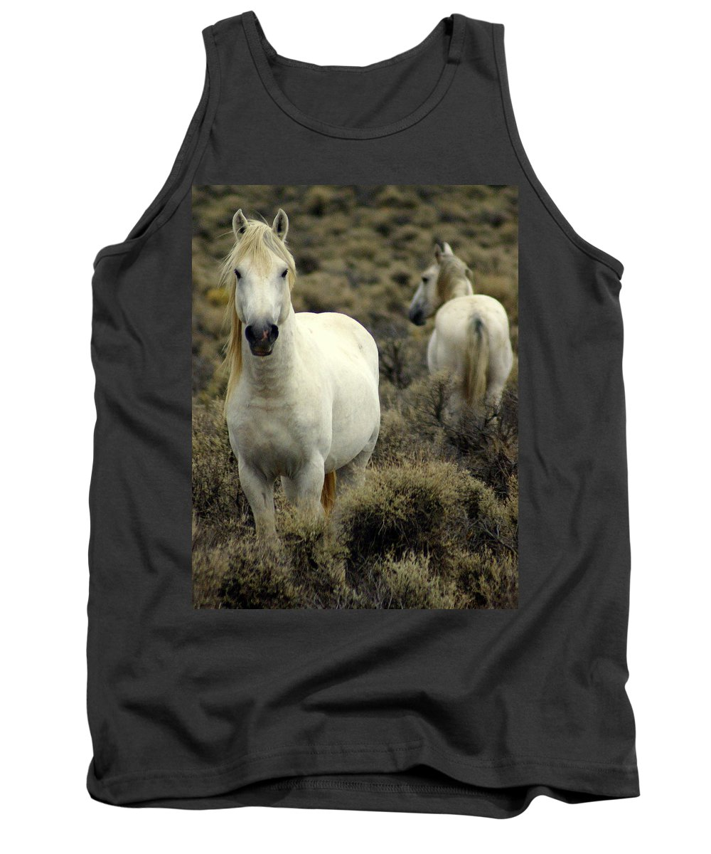 Wild Horses Tank Top featuring the photograph Wild Stallion by Marty Koch