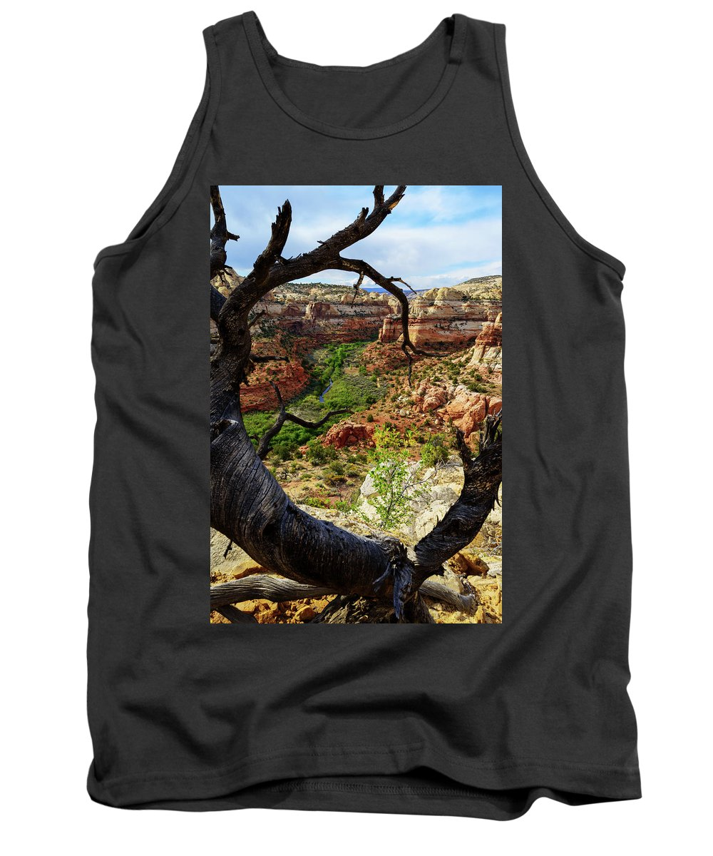 Chad Dutson Tank Top featuring the photograph Window by Chad Dutson
