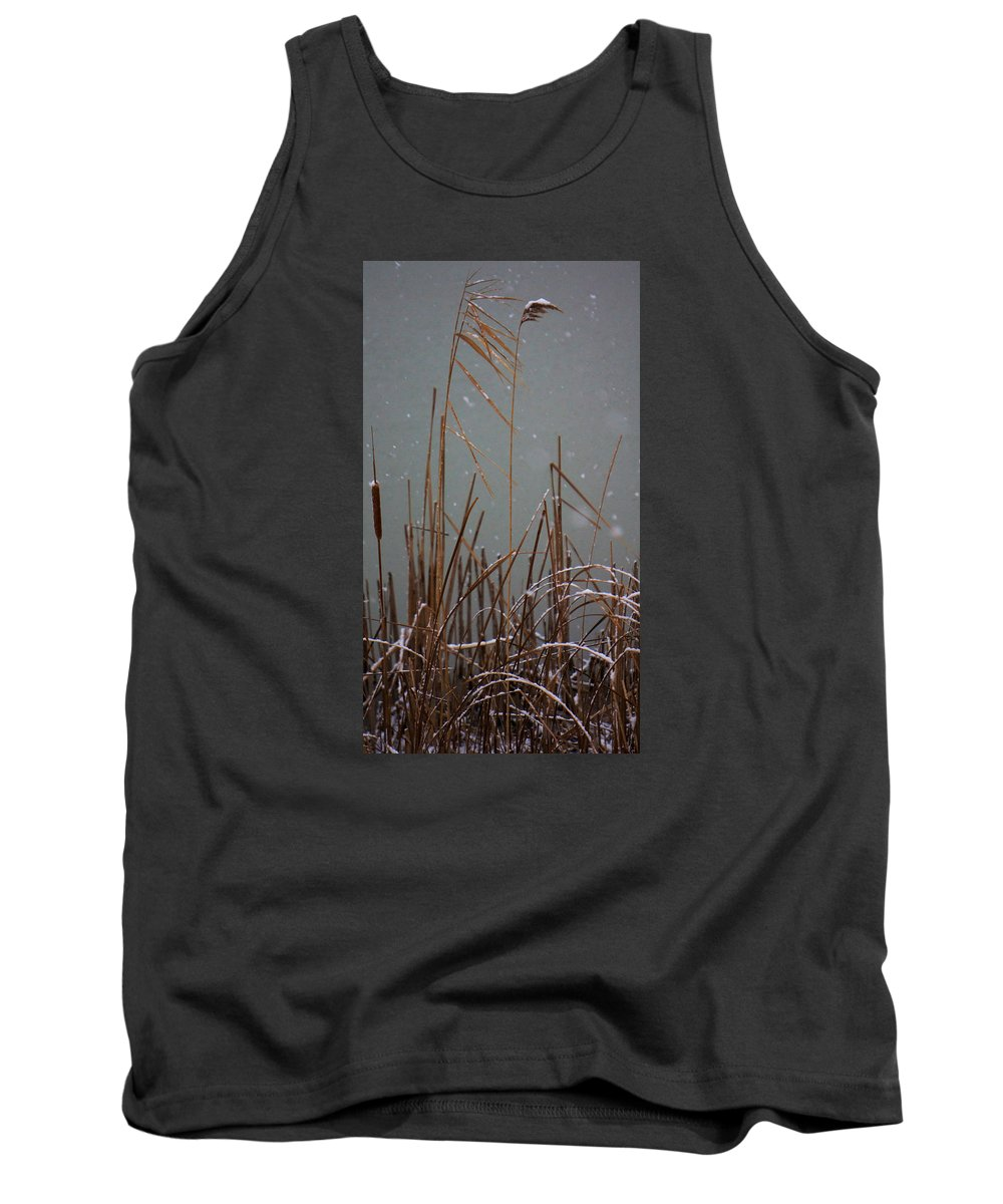 Reeds Tank Top featuring the photograph Winter Cat Tail by Brooke Bowdren