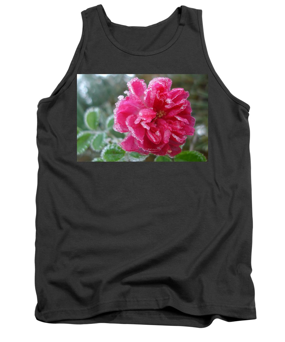 Rose Tank Top featuring the photograph Winter Rose by Susan Baker