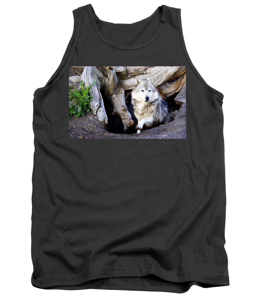 Wolf Tank Top featuring the photograph Wolf Den 1 by Marty Koch