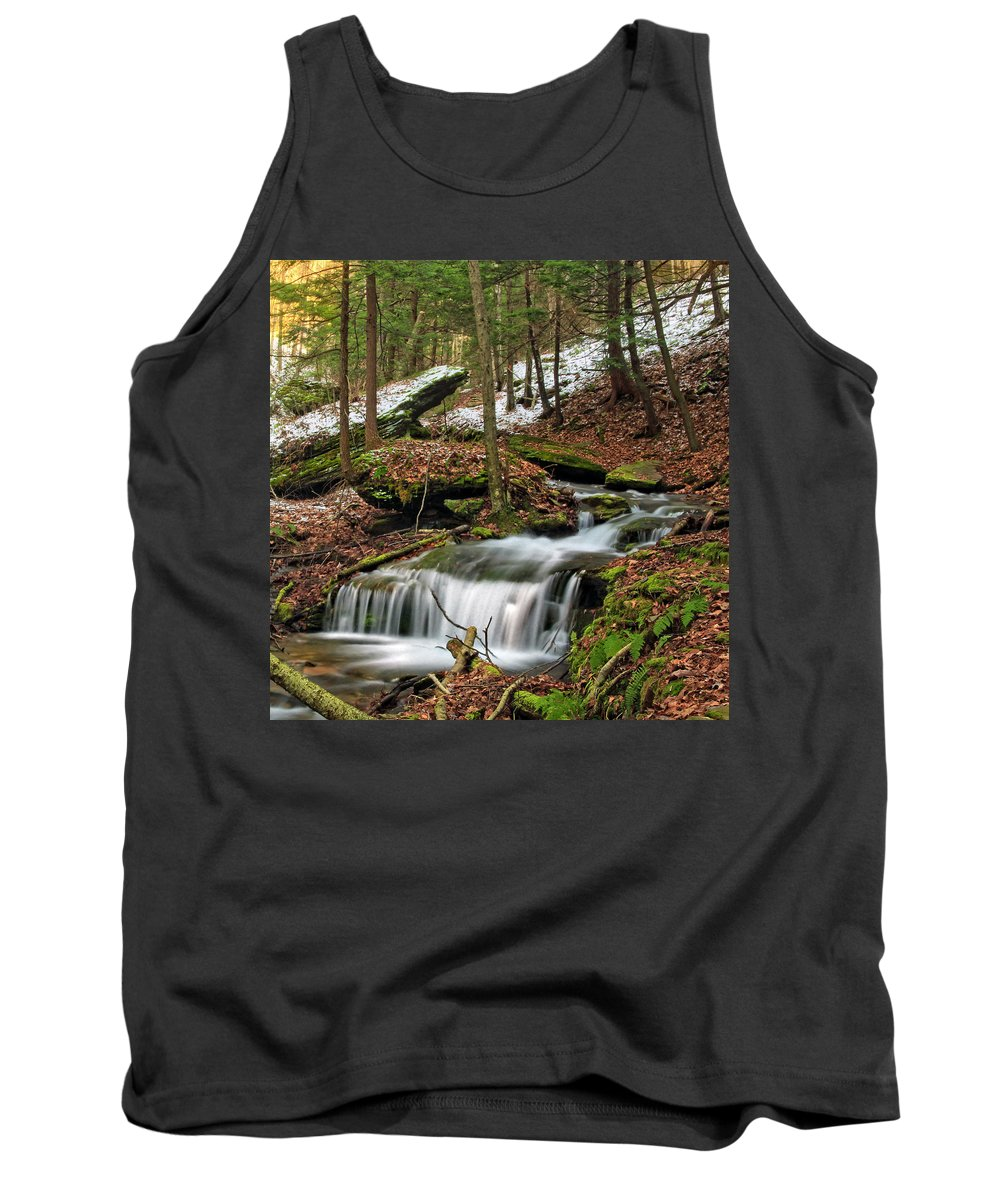 Columbia Gorge Tank Top featuring the photograph Wolf Run 2 by Ingrid Smith-Johnsen