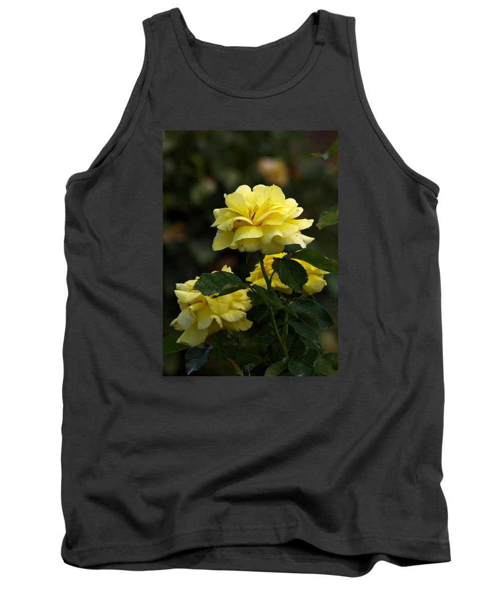 Ann Keisling Tank Top featuring the photograph Yellow Roses by Ann Keisling