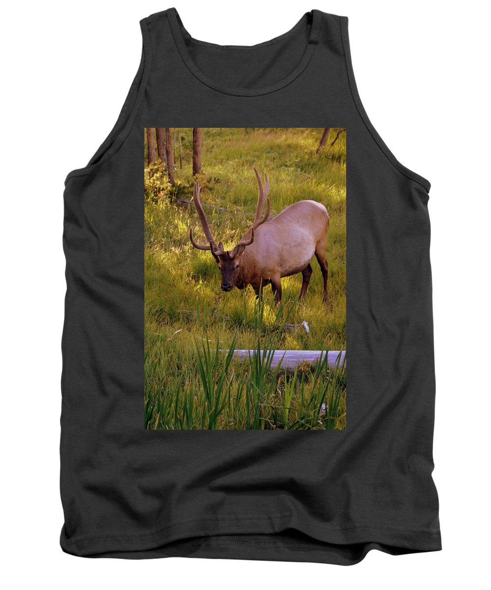 Elk Tank Top featuring the photograph Yellowstone Bull by Marty Koch