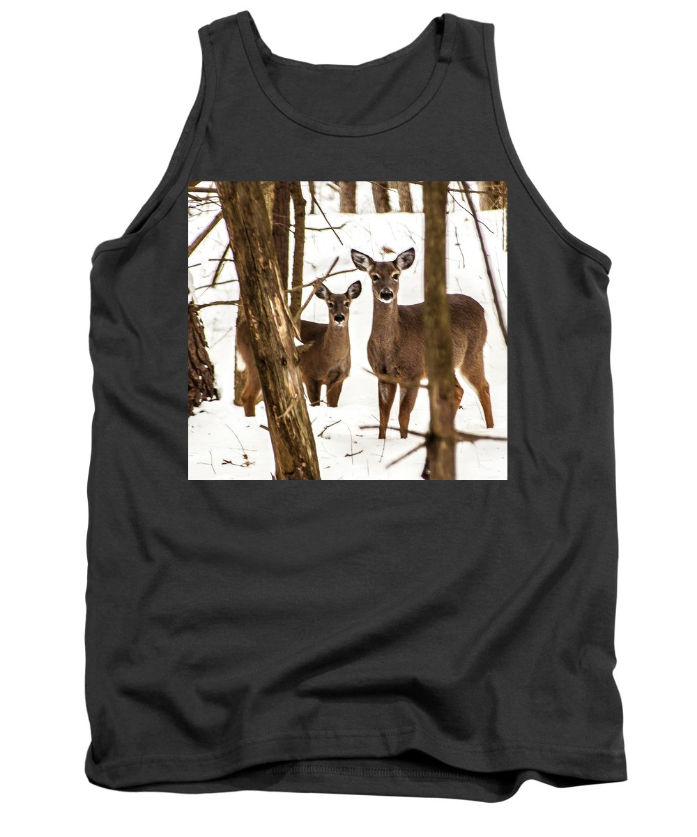 Deer Tank Top featuring the photograph Your Looking At Me by George Fredericks