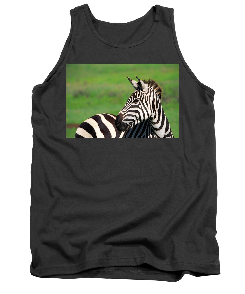 Africa Tank Top featuring the photograph Zebra by Sebastian Musial