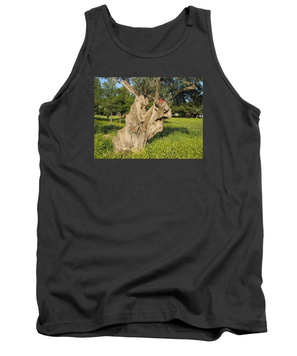 Old Olive Tree Tank Top featuring the photograph Zoomorphical Olive by Andonis Katanos
