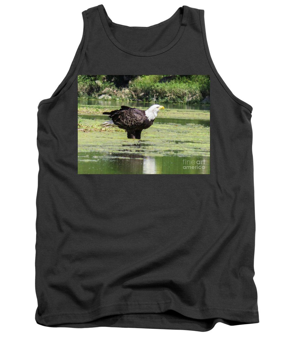 Eagle Tank Top featuring the photograph Bald Eagle's Look by Terri Morris