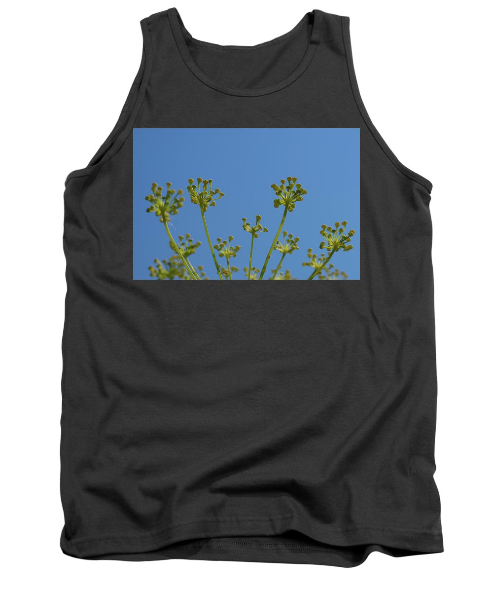 Dill Tank Top featuring the photograph Close Up Of Fennel Flowers. On Sky Background by Elisabetta Poggi