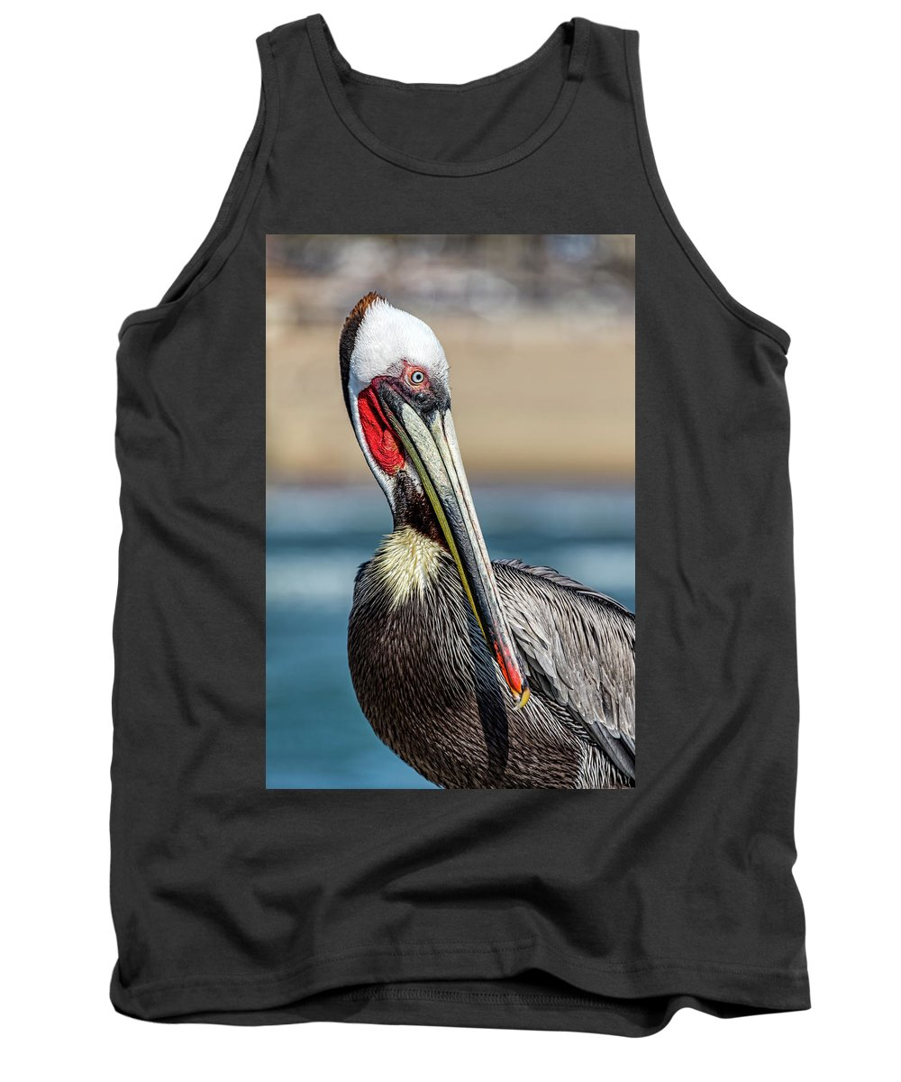 Pelican Tank Top featuring the photograph Pelican Pose by Kelley King