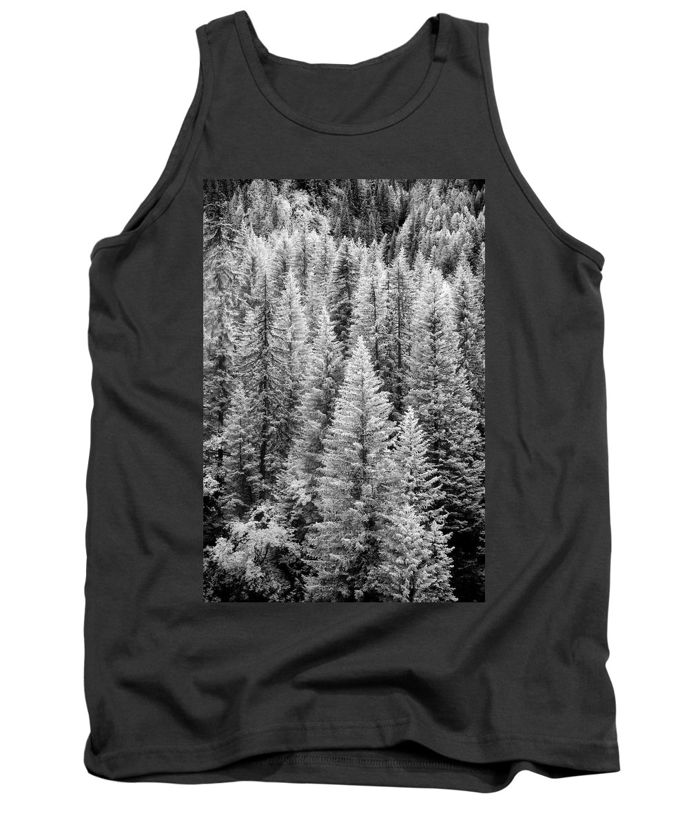 D Jon Evan Glaser Tank Top featuring the photograph Standing Tall In The French Alps by Jon Glaser