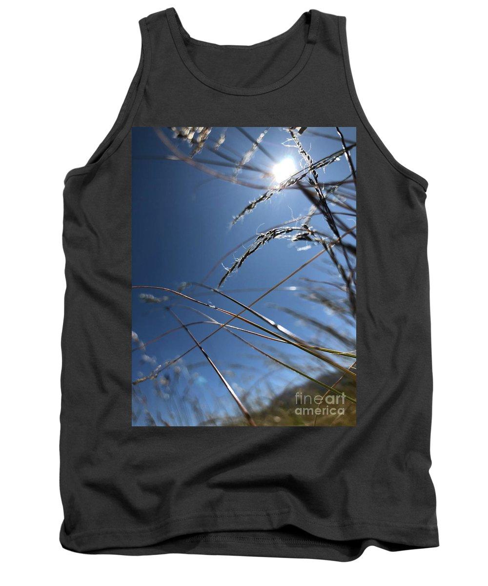 Grass Tank Top featuring the photograph Sun Grass Dance by Nadine Rippelmeyer