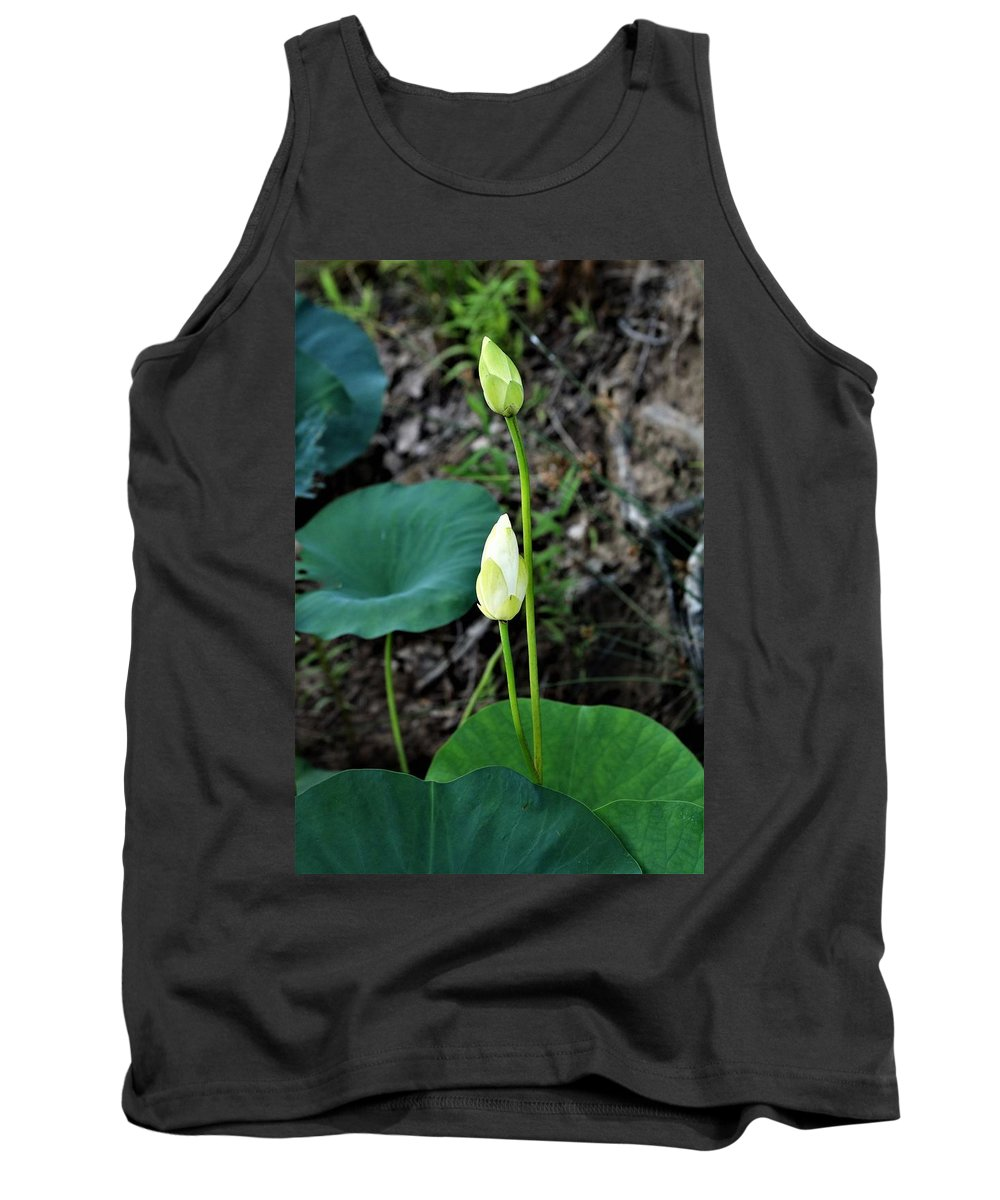 Nature Tank Top featuring the photograph Two White Lotus Flower Buds by Sheila Brown