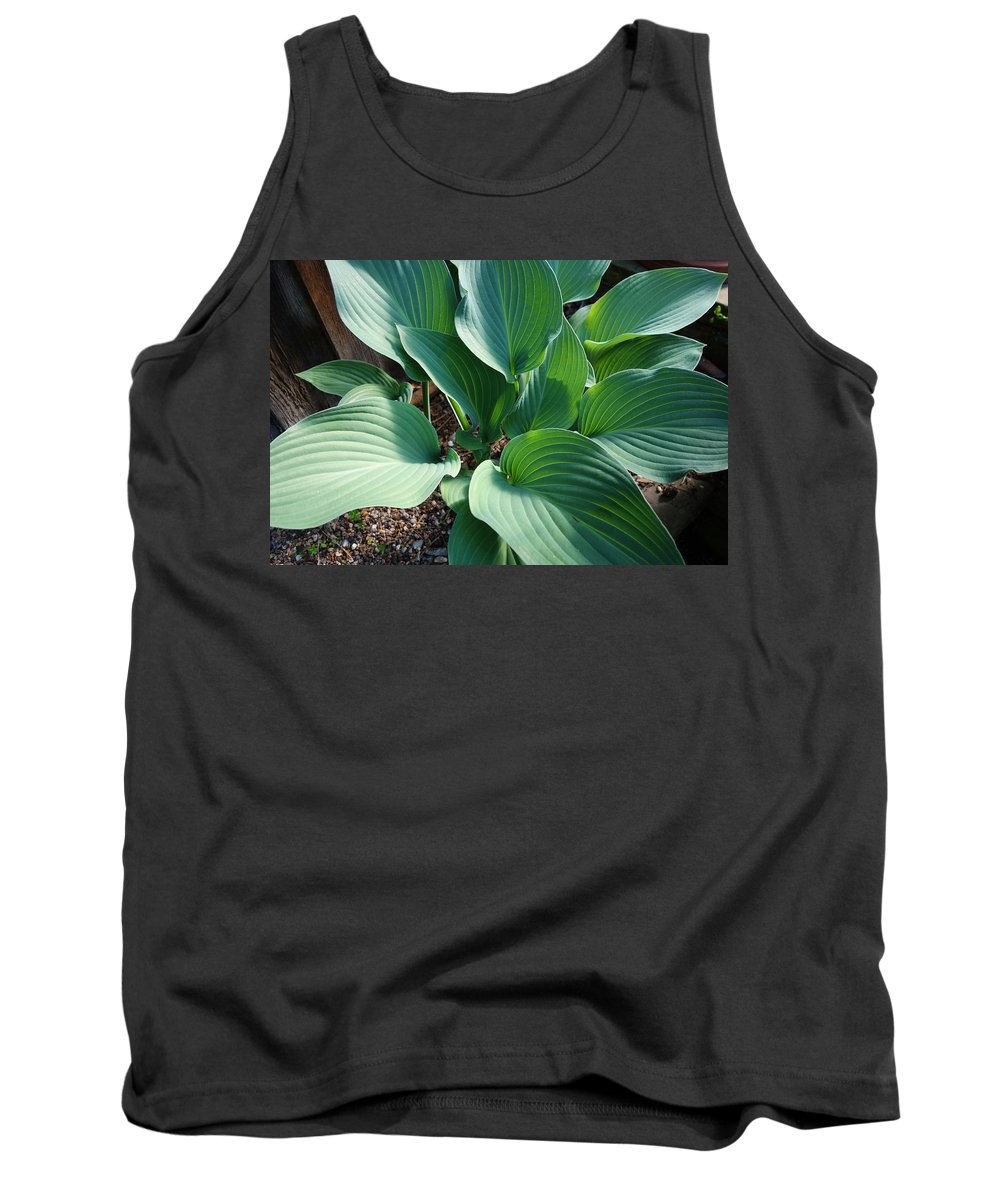 Hosters Tank Top featuring the painting Green leaves by Charles Stuart