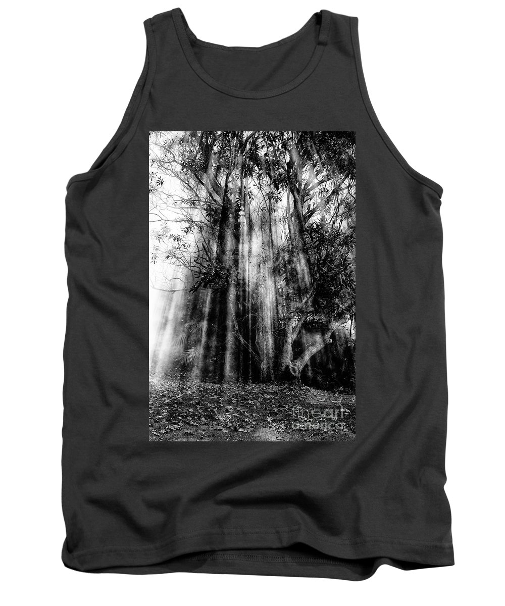 Fall Tank Top featuring the photograph Light beams through tree in monochrome by Sheila Smart Fine Art Photography