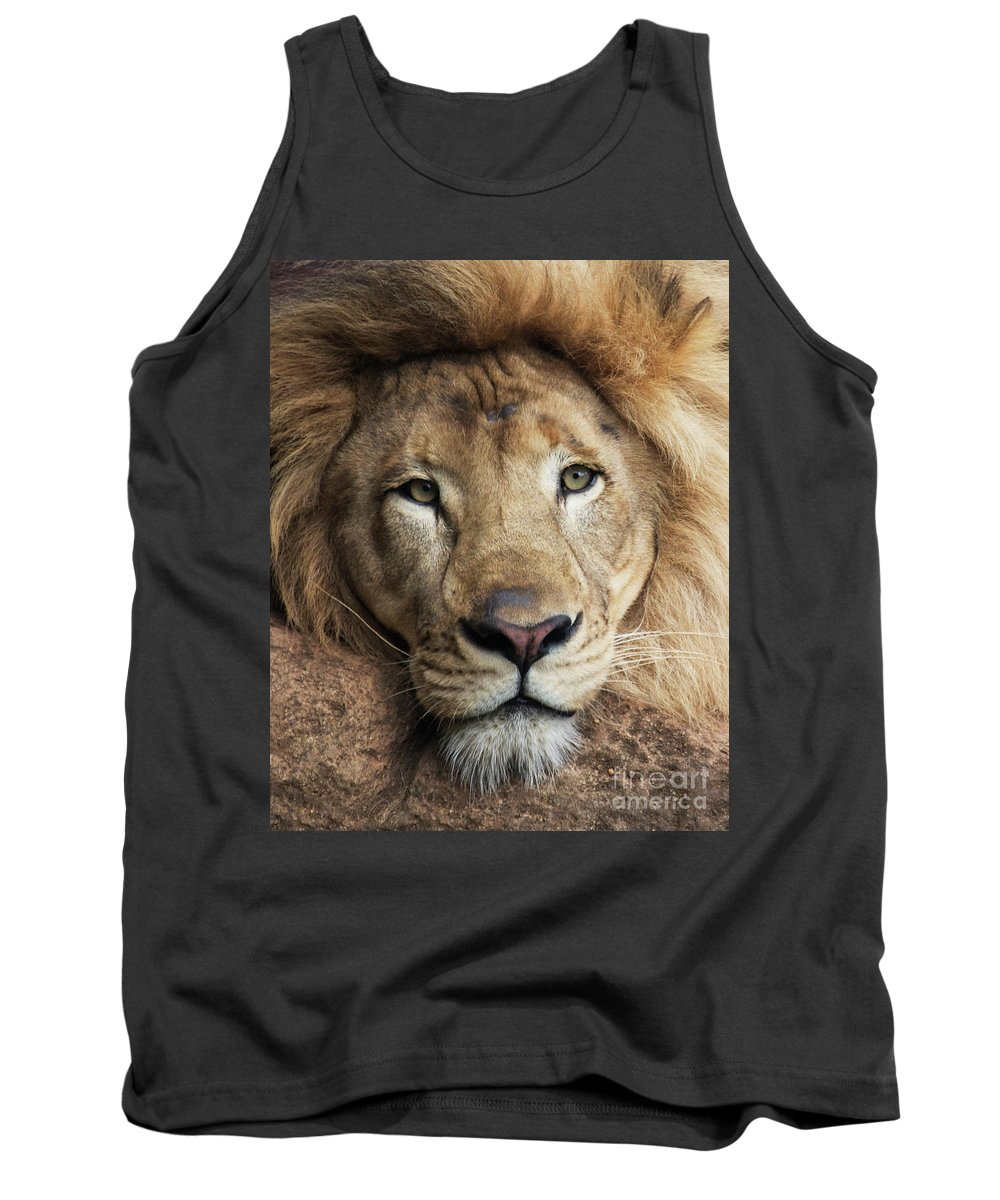 Lion Tank Top featuring the photograph Lion close up by Sheila Smart