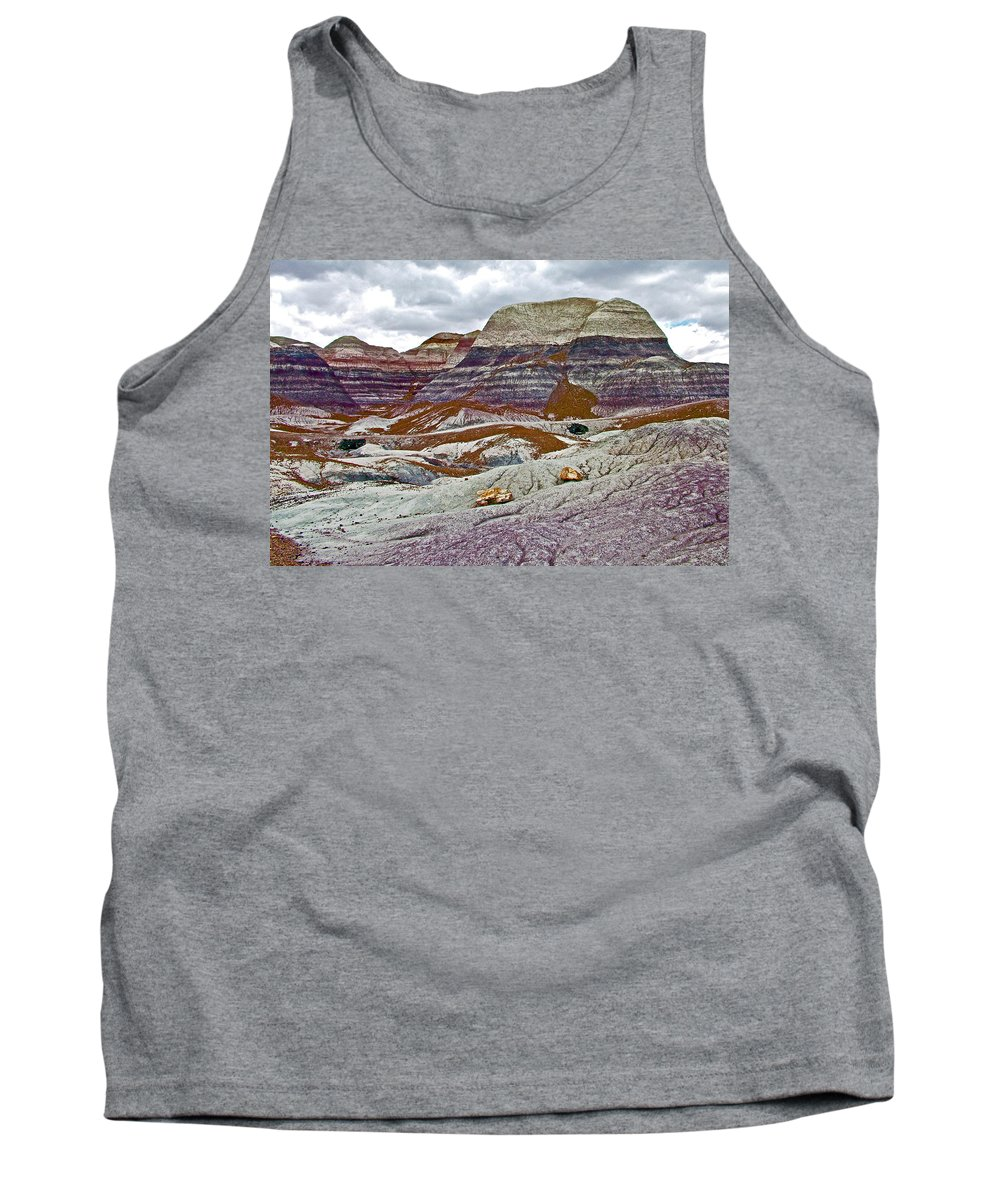 Blue Mesa Trail In Petrified Forest National Park Tank Top featuring the photograph Blue Mesa Trail In Petrified Forest National Park-arizona by Ruth Hager