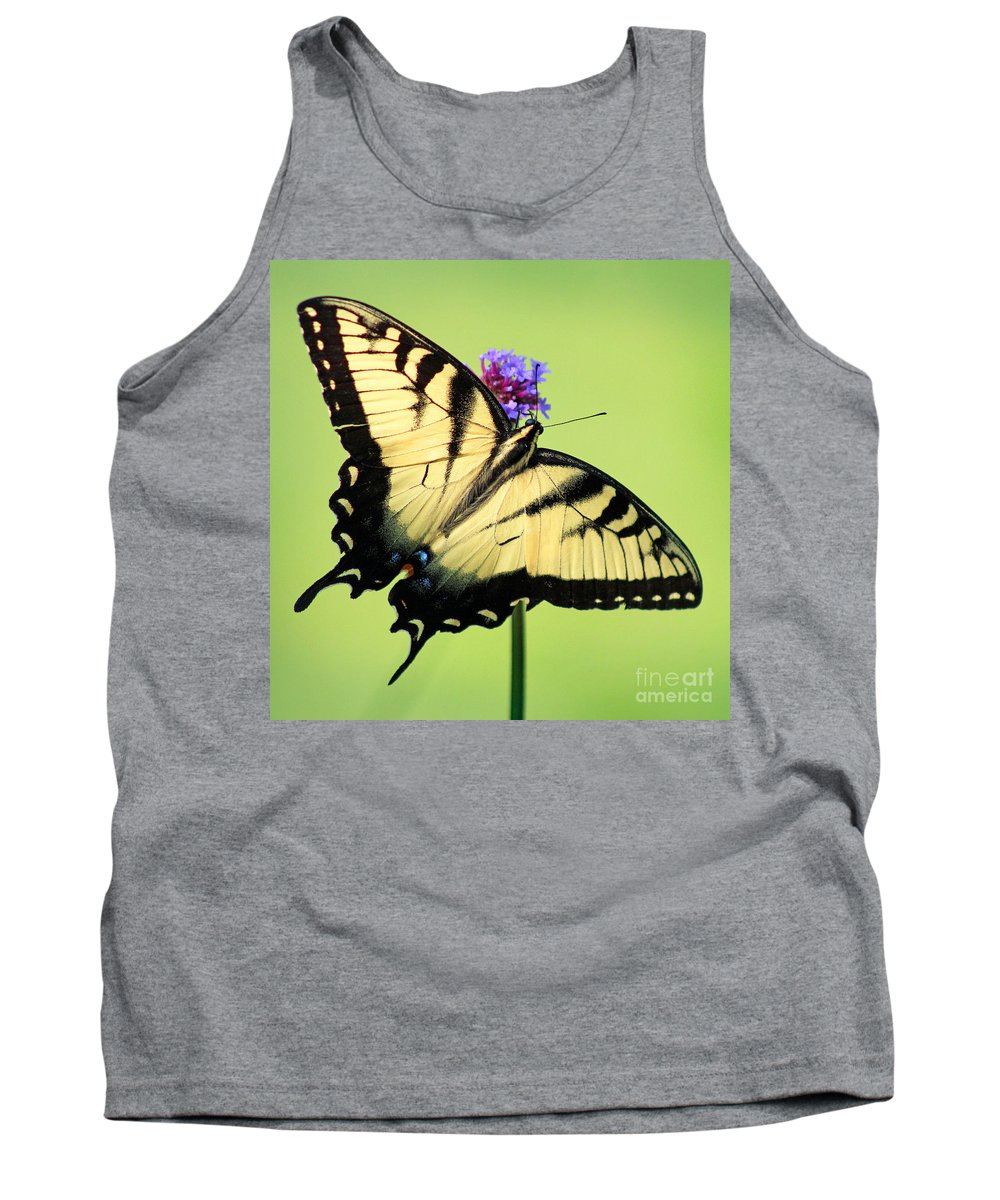 Butterfly Tank Top featuring the photograph Eastern Tiger Swallowtail Butterfly Square by Karen Adams