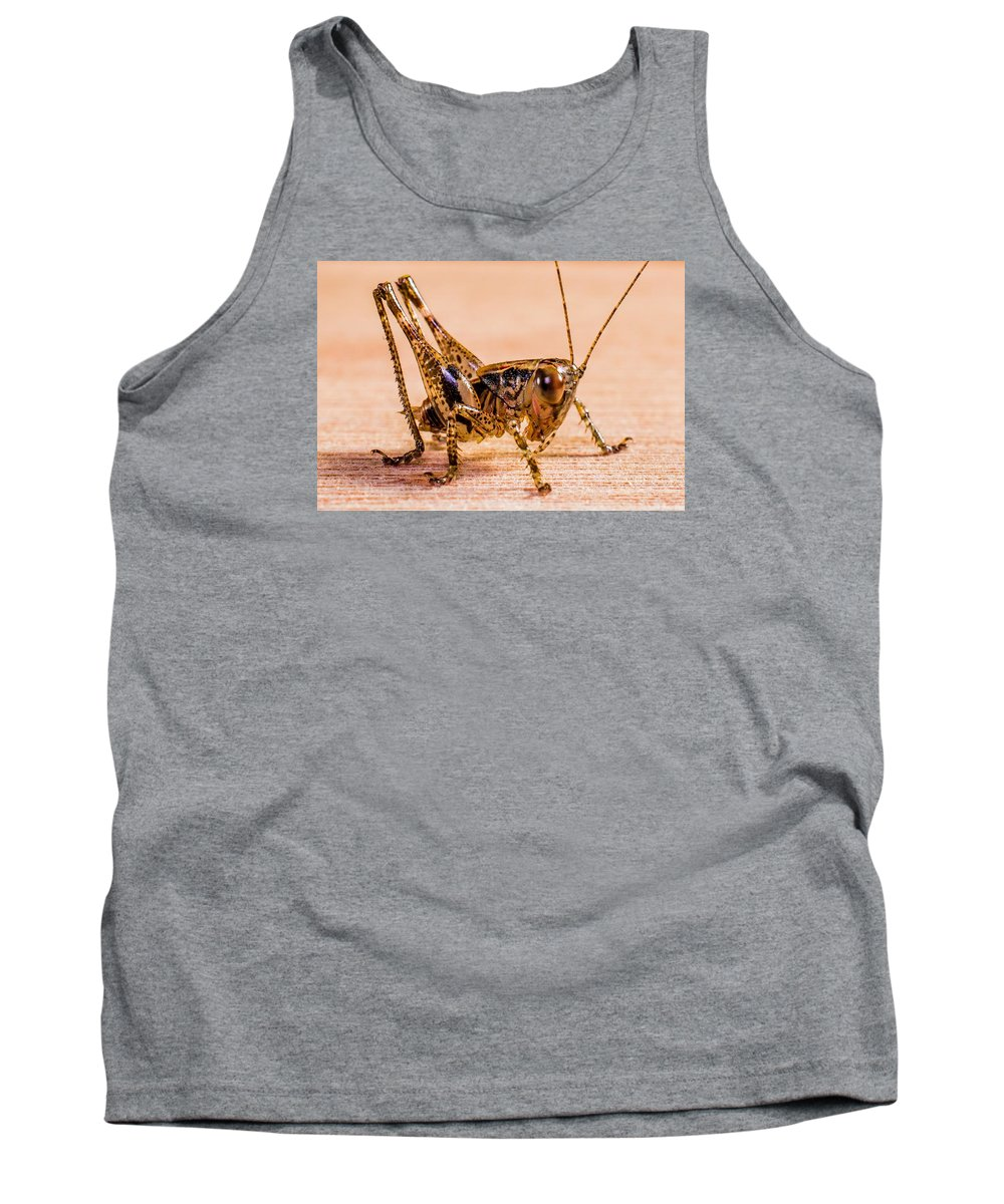Grasshopper Tank Top featuring the photograph Grasshopper by FL collection