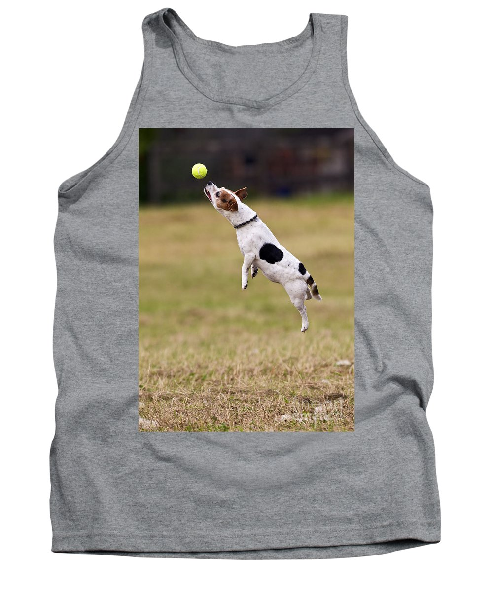 Jack Russell Tank Top featuring the photograph Jack Russell Jumping For Ball by Brian Bevan