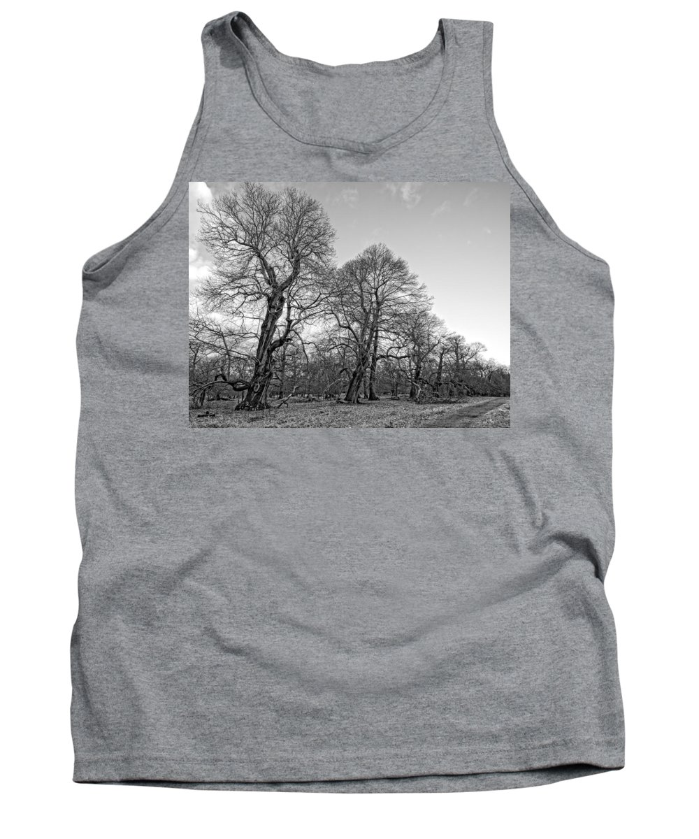 Black And White Tank Top featuring the photograph Old Trees by Roy Pedersen