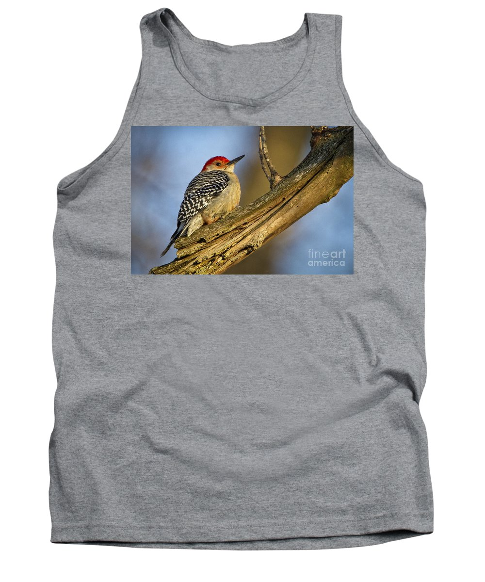 Nature Tank Top featuring the photograph Red-bellied Woodpecker by Ronald Lutz