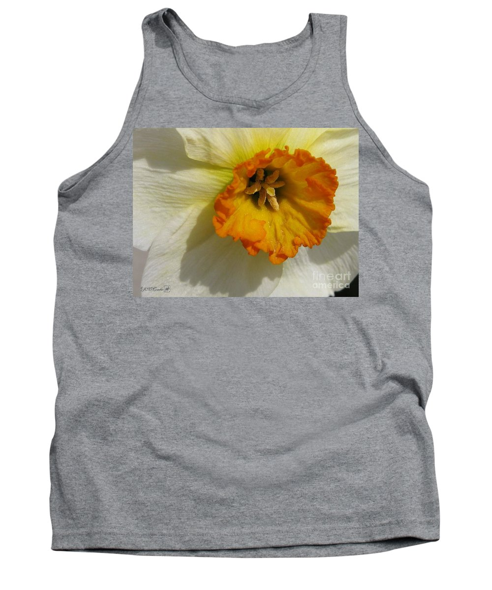Mccombie Tank Top featuring the photograph Small-cupped Daffodil Named Barrett Browning by J McCombie