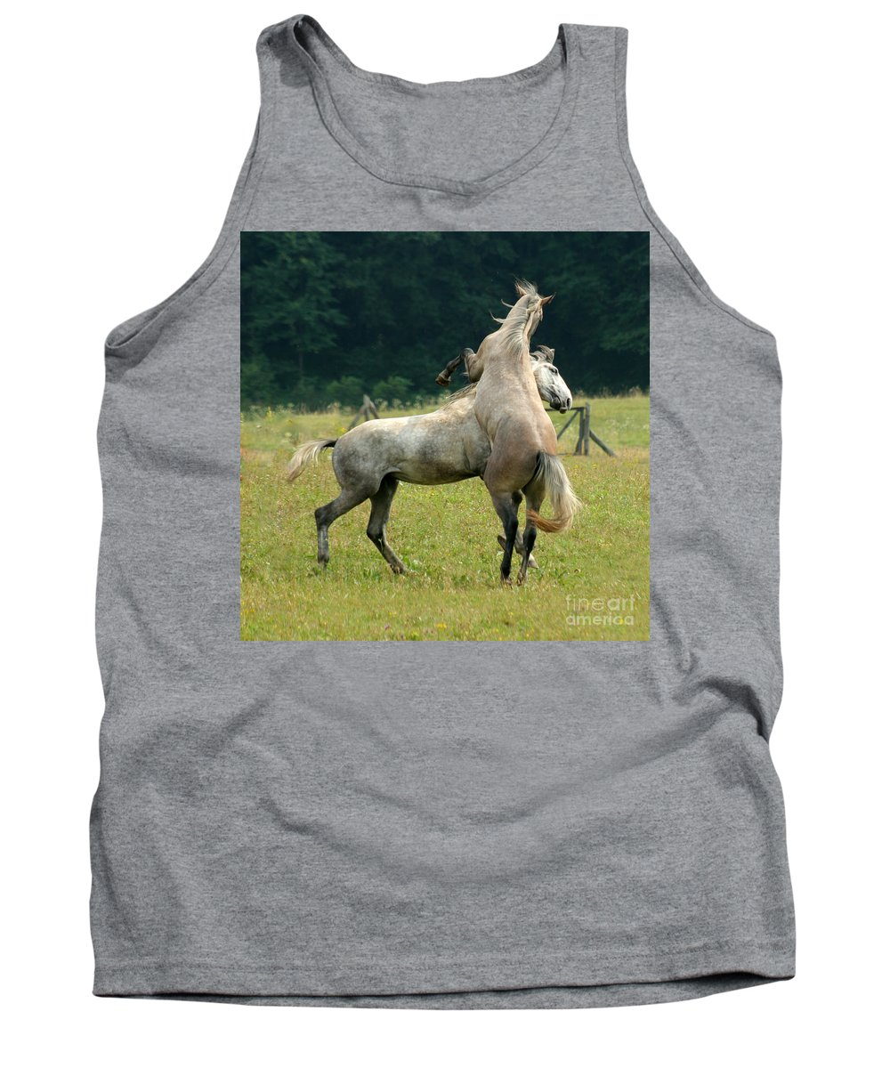 Horse Tank Top featuring the photograph The Fight by Angel Ciesniarska
