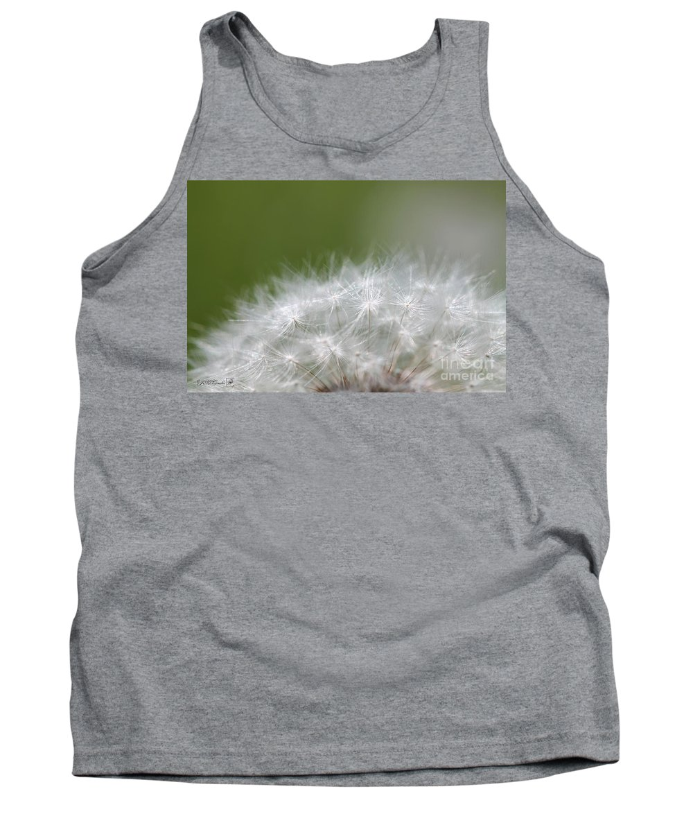 Mccombie Tank Top featuring the photograph Dandelion by J McCombie