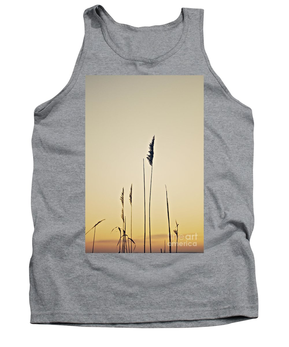 Autumn Tank Top featuring the photograph Wild Grass by Dan Radi