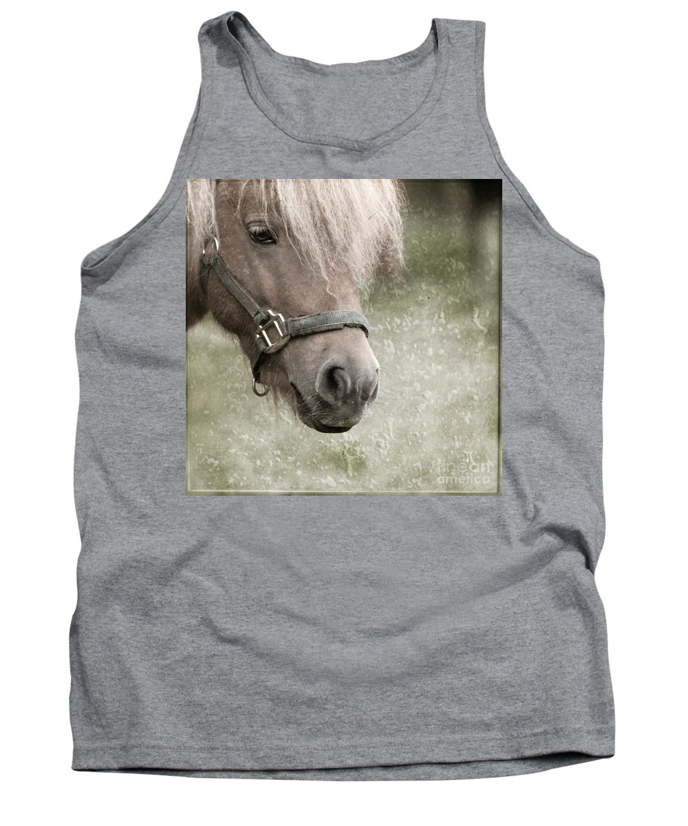Horse Tank Top featuring the photograph The Look by Angel Ciesniarska
