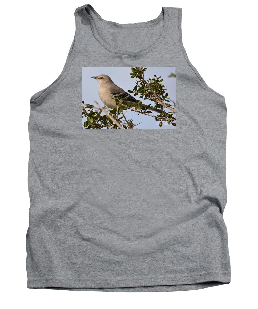 Northern Mockingbird Prints Tank Top featuring the photograph Northern Mockingbird by Ruth Housley