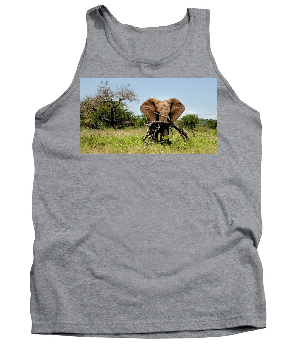 Elephant Tank Top featuring the photograph African Elephant Carying A Tree With Its Trunk by Dray Van Beeck
